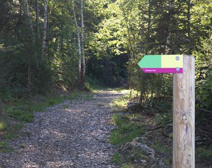 Running Walking Trail, Bassersdorf, BXA, Hardwald